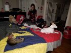 Triple bed animals