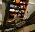 Elliptical cat
